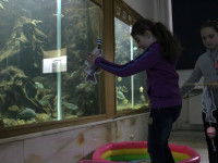 Lovení ryb