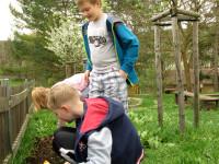 V záhonech máme hlínu ze školního kompostéru.