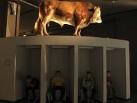 Expozice Zemědělství, nejvýznamnější know-how lidstva