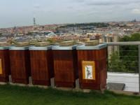 Úly na střeše muzea