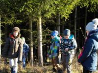 procházka lesem nám prospěla