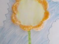 mandarinkový (2)